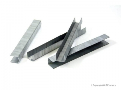 Galvanized and Stainless Steel Staples
